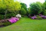 ogród z zadbanym trawnikiem