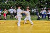 judo, sztuki walki